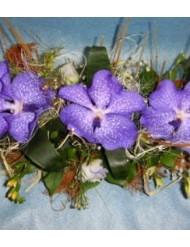 Орхидея Ванда 2