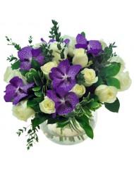 Орхидея Ванда и рози